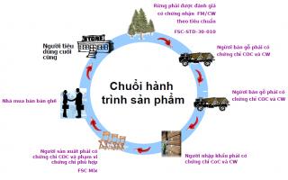 Chuỗi hành trình sản phẩm FSC (CoC)