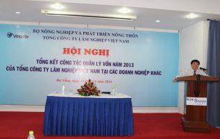 (Tiếng Việt) Một số hoạt động khác của công ty Vinafor Đà Nẵng